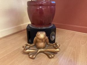 Mascot Frog from Old CYC Studio